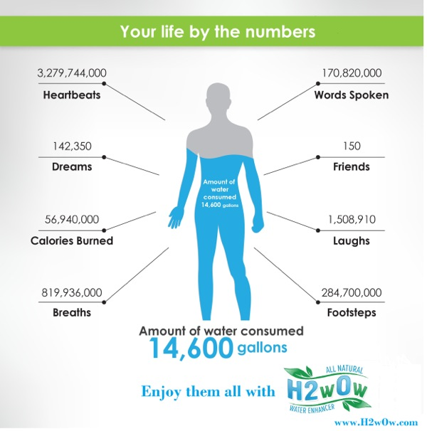 Your Life Infographic copy